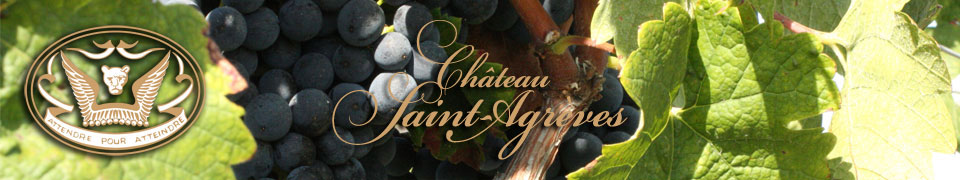 respect des méthodes traditionnelles de vinification