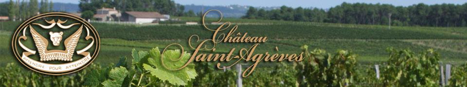 Vignoble des Graves de la région de Bordeaux
