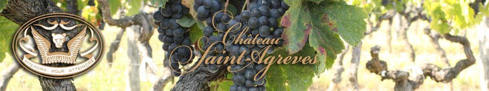 Château viticole à caractère familial